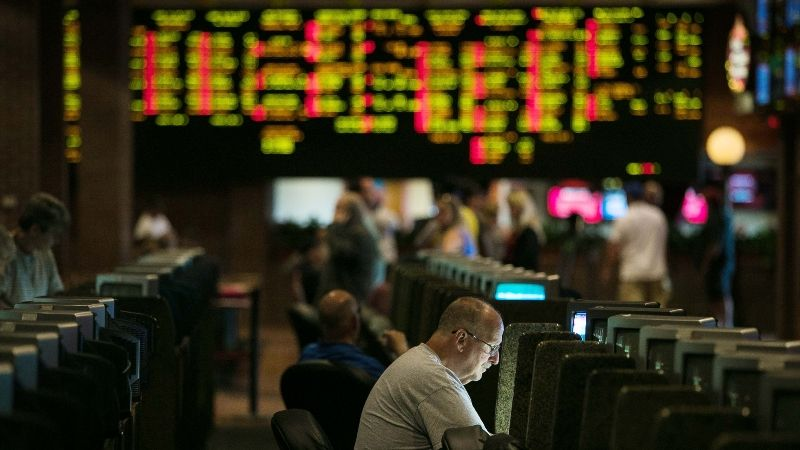 The way a sports gambling guide helps you